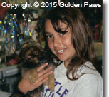 pet retail store - Golden Paws