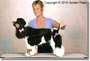 Mitzi Parish dog grooming Golden Paws